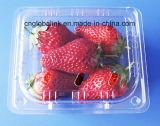Copertura superiore di plastica a perdere del mirtillo della fragola dei contenitori della frutta