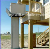 Disabled를 위한 세륨 Certificated Hydraulic Home Elevator Lift