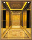 유압 엘리베이터 홈 별장 엘리베이터 또는 상승 (RLS-226)