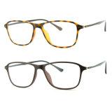 Het populaire Optische Frame van het Oogglas Ultem Plastic Eyewear met Slank Roestvrij staal 7023