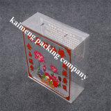 Impresión plegable del rectángulo del regalo plástico del animal doméstico de la categoría alimenticia de la fuente de China