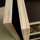الصين سعر واجه فيلم خشب رقائقيّ, بناء خشب رقائقيّ من الصين مصنع
