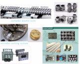 Máquina industrial do processo da massa