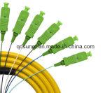12cores Sc/APC 0.9mm Smのシンプレックス光ファイバ束ねられたピグテール
