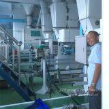 pour le plan d'action libre de moulin de farine de blé/l'usine moulin de farine de blé coûter en Egypte
