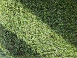 販売のためのKaiqiの人工的な草、子供のための人工的な草