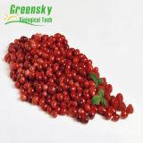 Выдержка плодоовощ клюквы Greensky с 10% - 70% PAC