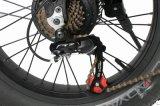뚱뚱한 타이어 바퀴를 가진 전기 발동기 달린 자전거를 접히는 숨겨지은 건전지