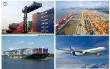 Consolideer de Verschepende Dienst aan de Eilanden van Oceanië Één Logistiek van het Einde