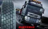 Carro Tire, TBR Tire, 295/80r22.5 Tire con ISO9001