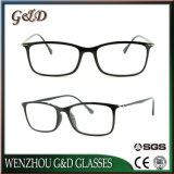 Het Plastic Optische Frame van uitstekende kwaliteit van het Oogglas Ultem met Slank Roestvrij staal 7031