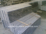 G261 Granite grise Granite Juparana pour pavage et revêtement mural