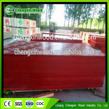 High Grade PP Plastic Faced Plywood in Chengxin Factory