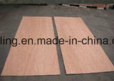Piel 3mm Puerta Contrachapado Bintangor / Okoume Plywood