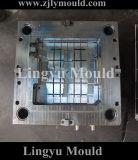 De Plastic Vorm van uitstekende kwaliteit van de Injectie voor Industriële Delen aan Japan (LY160816)