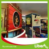 판매를 위한 작은 아이들 마음에 드는 실내 연약한 운동장