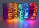 卸し売りヒョウプリントUSB再充電可能なLEDの明るいドッグカラー