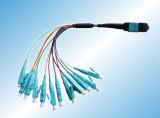 8 cordon de connexion optique de la fibre MPO/MTP de Cores/12 Cores/24cores Om3 Om4