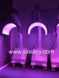 Терапия оборудования PDT СИД салона красотки светлая для внимательности кожи