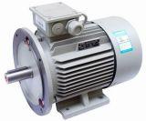 Yd Two Speed High Efficiency IE2-Motoren
