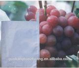 O Chile deu boas-vindas ao micro Pore protege o saco de papel da uva