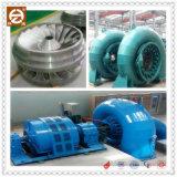 Hla551c-Wj-71 тип турбина воды Фрэнсис миниая
