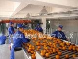 5t/H Natural Orange Juice Production Line