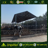 Costruzione d'acciaio chiara prefabbricata della costruzione dell'azienda agricola della mucca di basso costo di iso