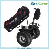 Chariots de golf électriques rapides, scooter extérieur de équilibrage de mobilité de chariot de golf de char électrique