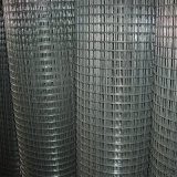 Steel saldato Wire Mesh in Roll