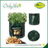 Vert-foncé végétaux de PE employé couramment mobile d'Onlylife élèvent le sac