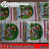 6 colori Flexo Printing Machines con Cooling System (CH886)