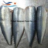 De nieuwe W/R Bevroren Vreedzame Makreel van Zeevruchten