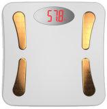 La meilleure échelle de salle de bains avec l'analyseur de Measurea de composition corporelle