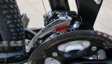 ディスクブレーキが付いている流行山の電気バイク