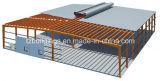 Edificio de la estructura de acero del diseño y de la fuente