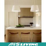 Mobília européia dos gabinetes de cozinha da cor da natureza do estilo (AIS-K295)