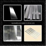 Campione libero di vendita caldo della barra piana 201 dell'acciaio inossidabile