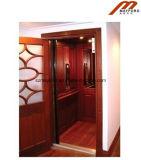 Удобный стеклянный домашний лифт с машиной Roomless