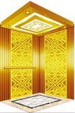 Sig. inciso specchio dell'elevatore dell'elevatore del passeggero & LMR Aksen Ty-K194