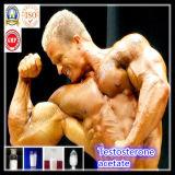 عضلة [بودي بويلدينغ] سترويد مسحوق كيميائيّ هرمون تستوسترون [أستت]