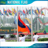 Drapeau national du Danemark de drapeau du monde (M-NF05F09013)
