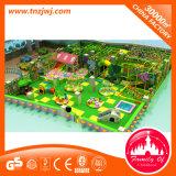Campo da giuoco impertinente dell'interno del castello del parco di divertimenti