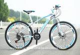 Dinámico, deportivo, bici de Bike&City de la montaña de la alta calidad (OEM)