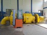 Het hydro Voltage 100~800kw van de Eenheid van de Turbogenerator (van het Water) Lage/Waterkracht Hydroturbine