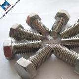 Boulon d'hexa de l'acier inoxydable DIN933