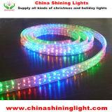 Luces brillantes impermeables de la guirnalda de la buena calidad LED