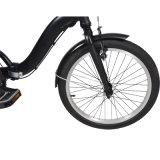 bici plegable eléctrica sin cepillo 20inch de 36V 250W