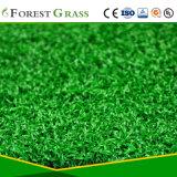 Herbe artificielle pour le golf d'intérieur (GFE-15Q-227-DS)