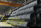 Q235、SAE1006/1006bのSAE10081008/Bの熱間圧延の鋼線棒
